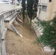 Καθαρίστηκαν οι κήποι του σχολείου